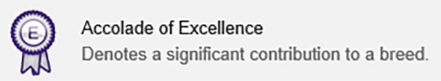 Accolade of Excellence